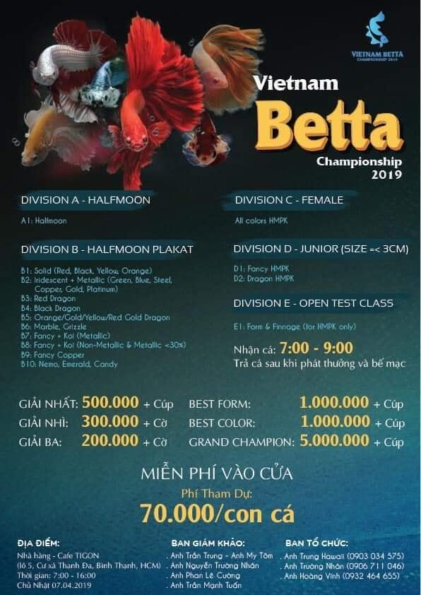 Vietnam Betta Championship 2019 – Cuộc Thi Betta Lớn Nhất Việt Nam 2019