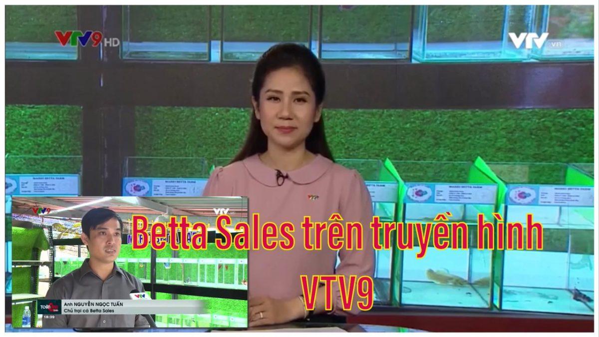 BettaSales trên kênh VTV9
